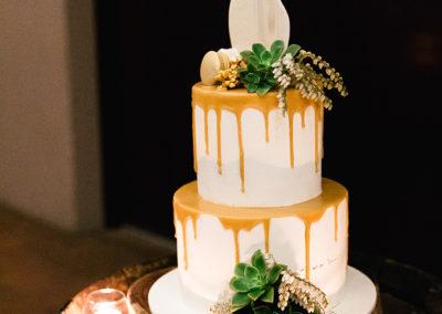 Succulents & Andromeda cake decoration