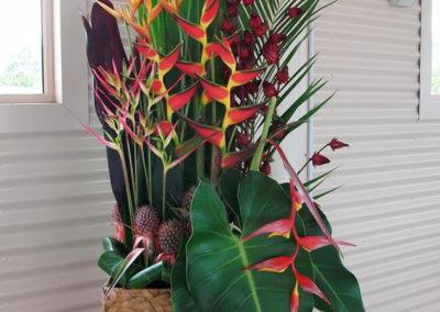 Gympie Gold Tropical arrangement