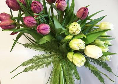 Tulip-arrangement